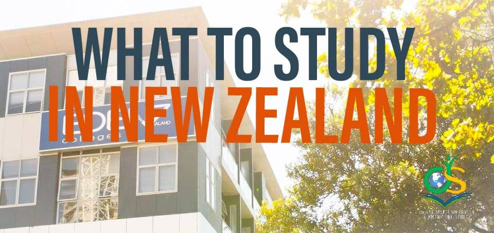 What to study in New Zealand